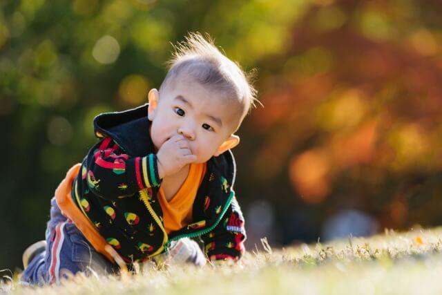 0歳児の遊び,乳幼児,園児,赤ちゃんの遊び