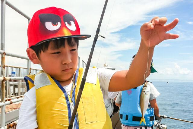 魚遊び,保育園 遊び,子供 魚遊び